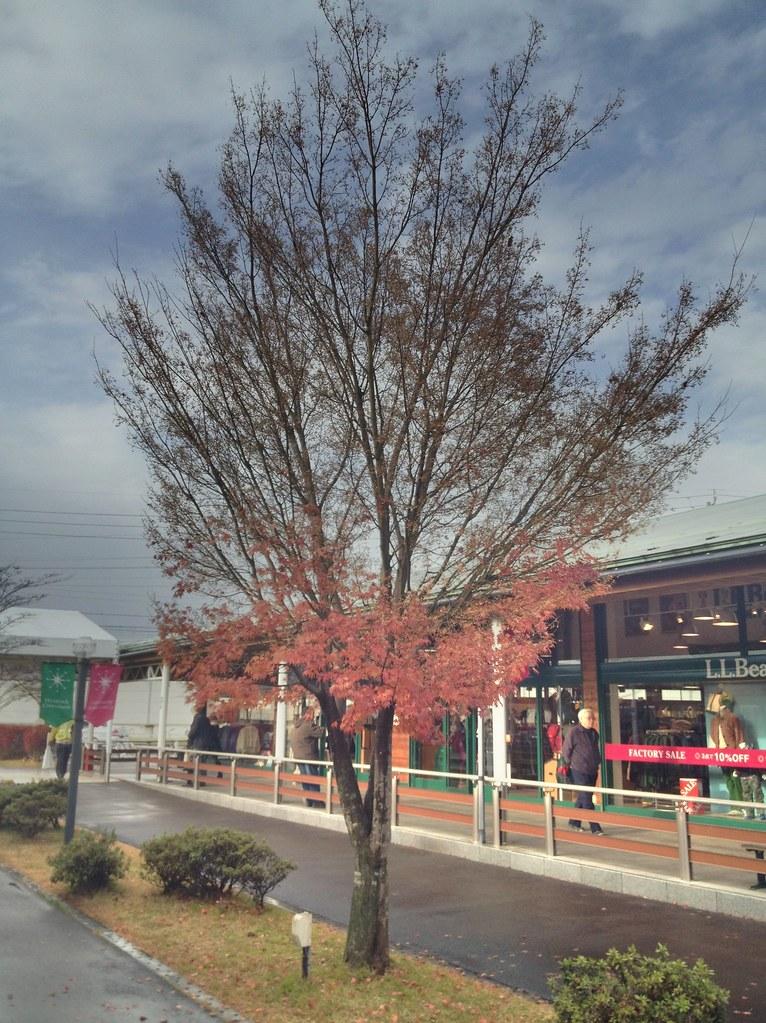 HDR @ Karuizawa prince shopping plaza