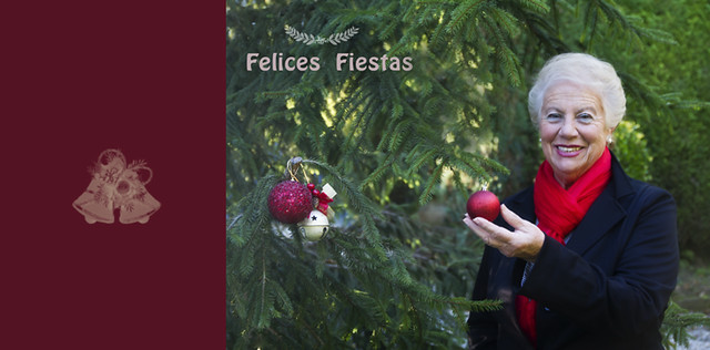 felices fiestas+ copia