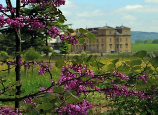 Croome Court from the Blooms