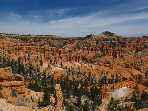 One of the many views from the Fairyland Trail, Bryce Canyon National Park, Utah