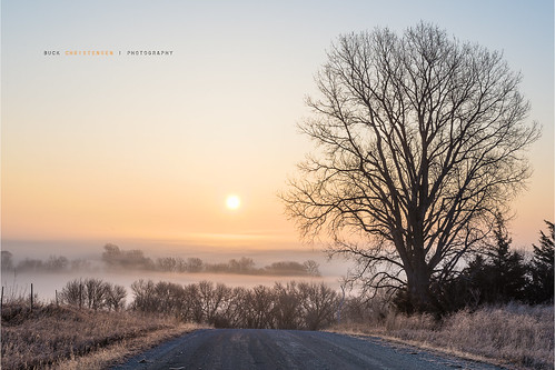 mist tree fog sunrise iowa hills council bluffs mineola loess