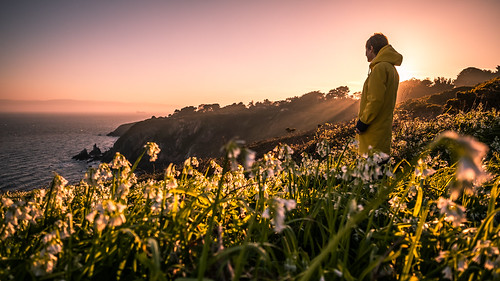 howth path portrait girl ireland sunset travel nature flowers dublin backlight outdoor light yellow cliff sea countydublin ie onsale portfolio