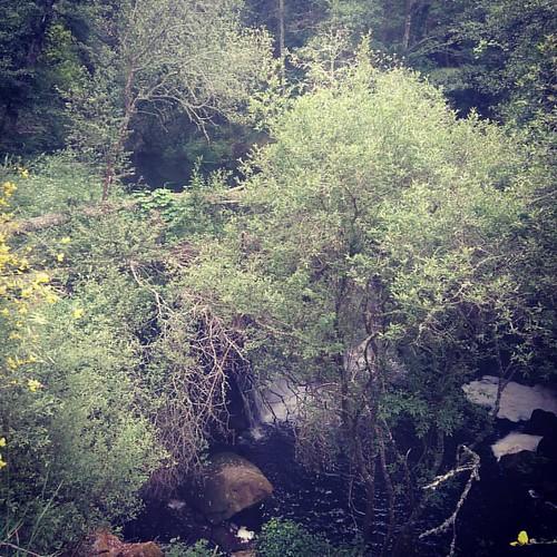 #caminhada   Lá ando eu perdido no #rio #seia