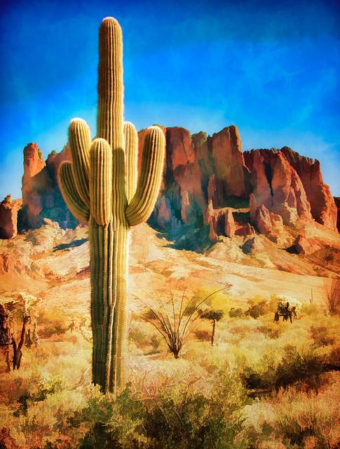 Saguaro Cactus - Textured