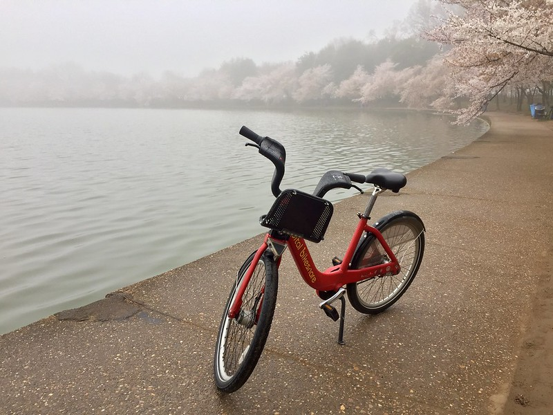 Foggy morning for bikeshare