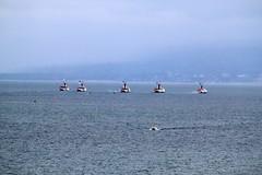 Lake Geneva CGN Boats