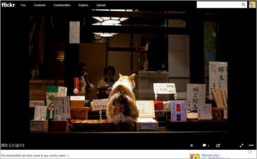 Flickr08