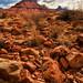 River Road Rocks by Jeff Clow