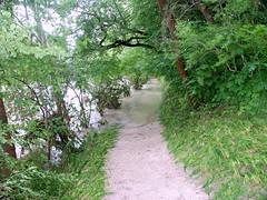 Trostberg-Hochwasser Alz-Juni 2013- Radweg zur Schule bei Degussa