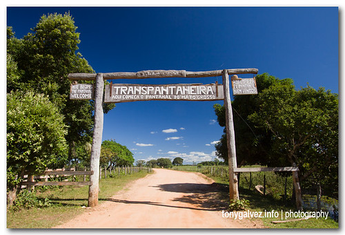 cuándo visitar el Pantanal