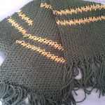Kyoryugreen scarf