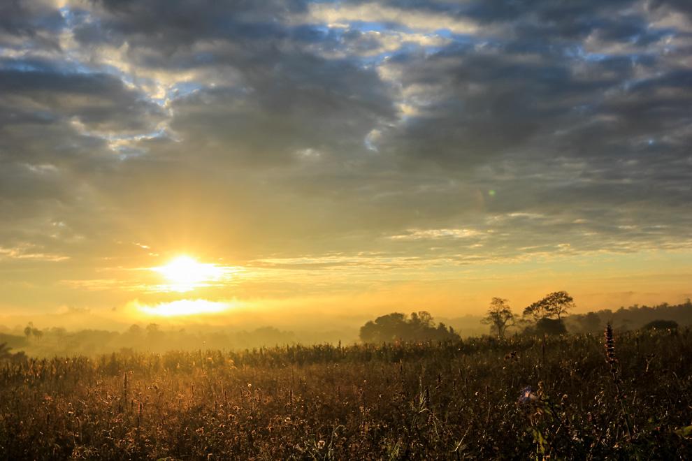 Los primeros rayos del sol iluminan un campo de maíz en un frío día de invierno en medio de la bruma, cerca del centro de Ita Verá. (Tetsu Espósito).