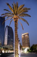 Palm of Dubai