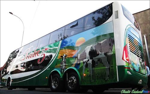 Buses Ruta 5