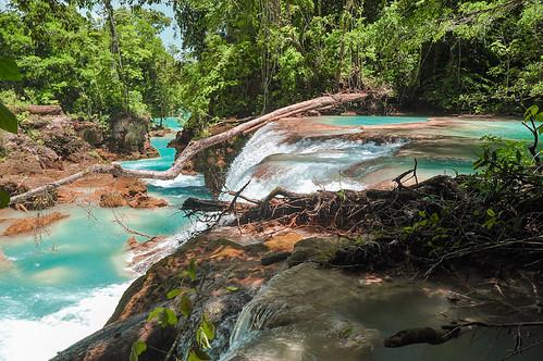 Cascadas de Agua Azul (37)