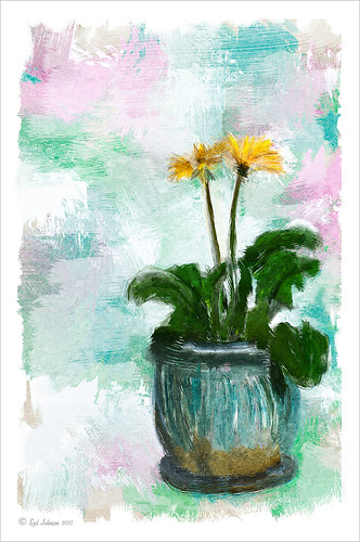 Image of two daisies in a pot painted using Jack Davis's action