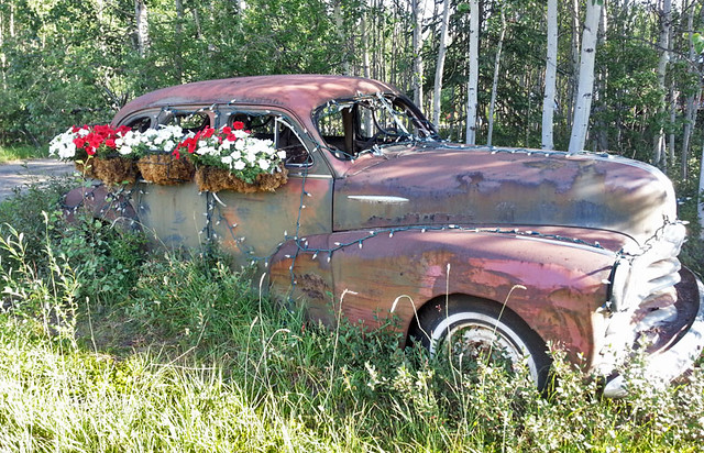 flower-pot-car
