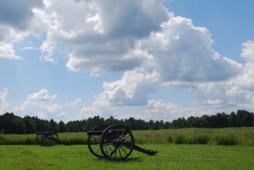 Confederate Guns