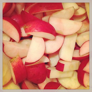 Making Organic Applesauce - Step Three