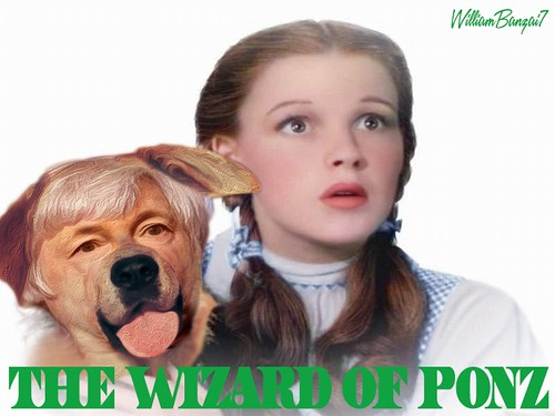 THE WIZARD OF PONZ by WilliamBanzai7/Colonel Flick