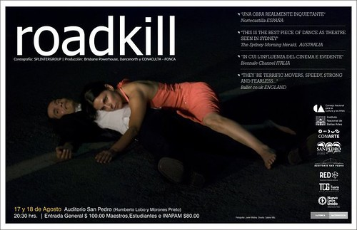 Teoría de Gravedad - Roadkill
