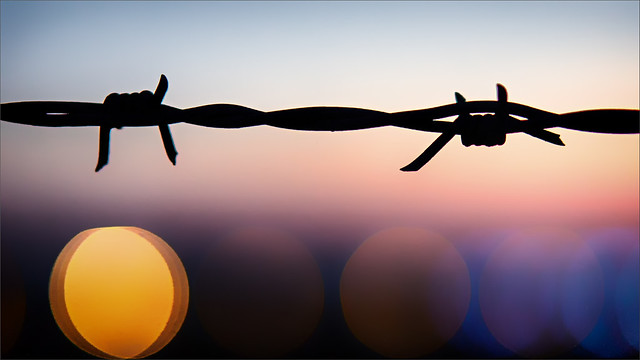 FV Flickr Top 5; 2-32: Barbed wire and lights