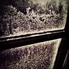 Light leaks through Silent and cold Reminding us that we are Hostages Of the places we choose to live.  #frost #window #cold