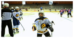stick and ball games(0.0), roller hockey(0.0), roller in-line hockey(0.0), ball game(0.0), box lacrosse(0.0), sports(1.0), team sport(1.0), ice hockey(1.0), hockey(1.0), player(1.0), ice hockey position(1.0), college ice hockey(1.0), bandy(1.0), athlete(1.0), team(1.0),