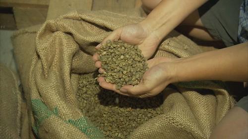 一袋公平貿易咖啡豆。