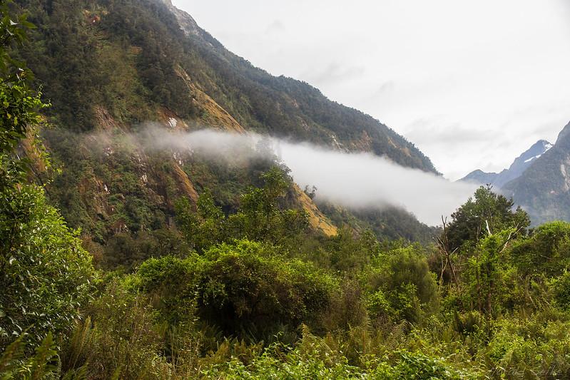 Mist in Arthur Valley