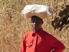 Zambia. Aldea entre Kasama y Mporokoso. Cabeza de transporte