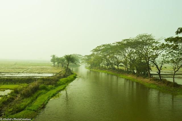 Green Bangladesh 2