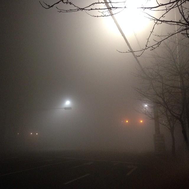지금 새벽 2시 인천 상황.. 태어나서 이렇게 짙은 안개는 처음 본다.... 무서울정도....
