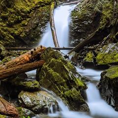 Lower Murhut Falls in the Olympic National Forest. #adventureinspired #roamtheplanet #awesomeearth #earthfocus #wanderlust #pnwonderland #pnwspotlight #adventurecollectiveco