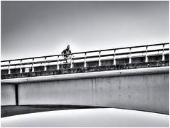Cyclist on the Zealand Bridge (5022 m)