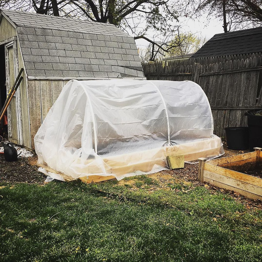Convertible greenhouse  Here with the cover on  I think I