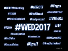 Hashtags 04.2017