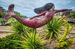 Norfolk VA Mermaid