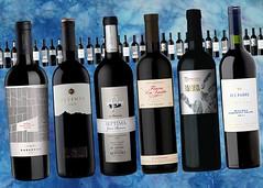 10 nuevos vinos para probar en la alta gama