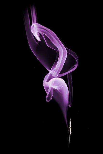 Purple flamingo | Flickr - Photo Sharing!