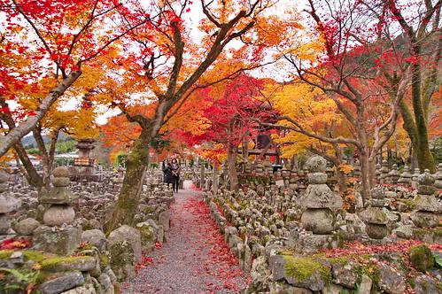 【写真】紅葉 : 化野念仏寺