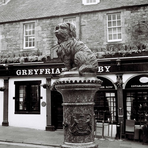 Greyfriars Bobby by David Farrer