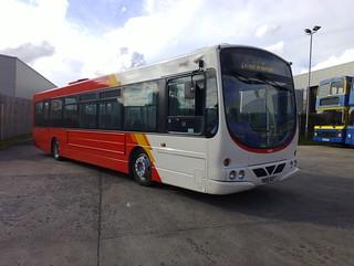 Rosso 231