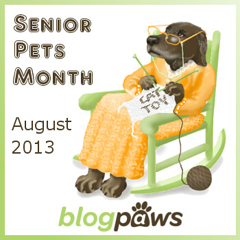 SeniorPetsMonthAug2013