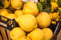 clementine(0.0), orange(0.0), plant(0.0), calabaza(0.0), mandarin orange(0.0), citrus(1.0), lemon(1.0), yellow(1.0), vegetarian food(1.0), meyer lemon(1.0), yuzu(1.0), produce(1.0), fruit(1.0), food(1.0), tangelo(1.0), sweet lemon(1.0), bitter orange(1.0), citron(1.0), tangerine(1.0),