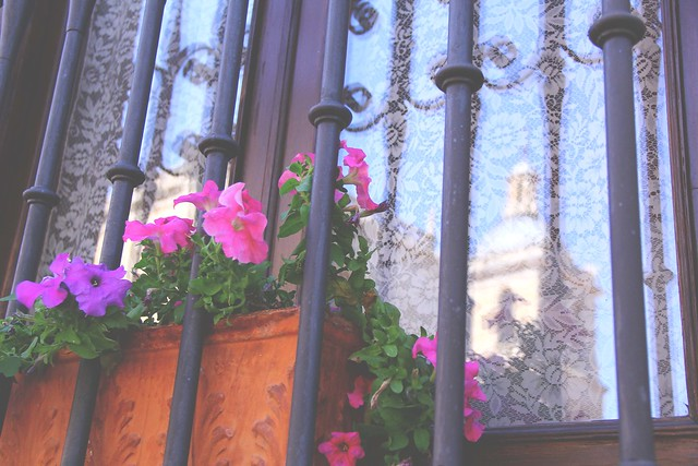 window reflection and balcony flowers ciudad rodrigo, spain