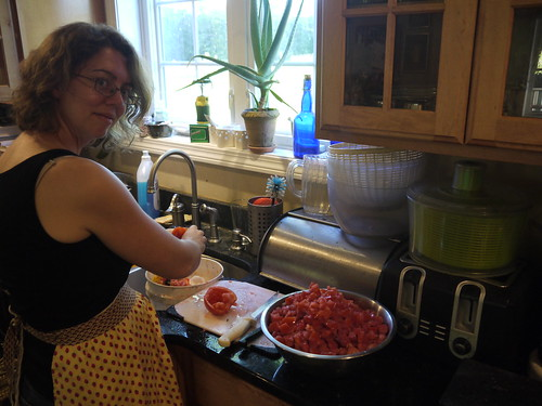 Making Salsa