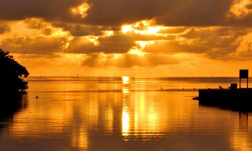 ocean sky seascape reflection nature water clouds sunrise palms landscape day estate florida cloudy miami scenic deering deeringestate deeringestates cutlerbay