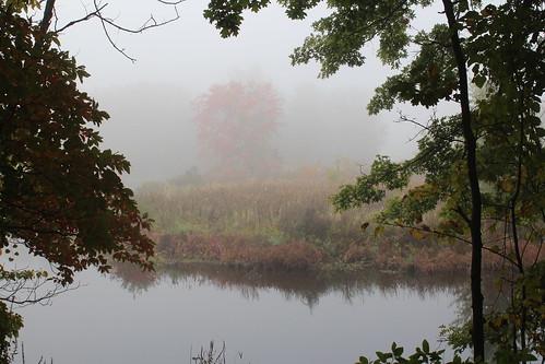 2013 september30 fog hiddenmarshsanctuary threeriversmi swmlc