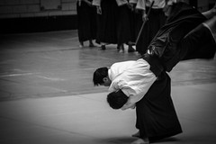 daitå ryå« aiki jå«jutsu, aikido, hapkido, individual sports, contact sport, sports, combat sport, martial arts, monochrome photography, japanese martial arts, monochrome, black-and-white, black,